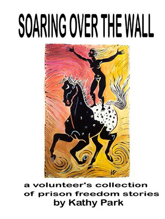 Cover page - Soaring over the wall